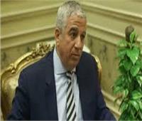 رئيس لجنة العلاقات الخارجية بمجلس النواب يلتقي نظيره الصربي