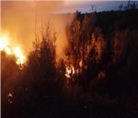 اندلاع حريق محدود بجوار مبنى أكاديمية الفنون بالهرم
