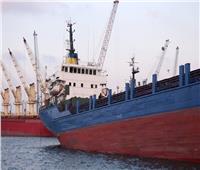 السيطرة على الحريق نشب في السفينة «حبيبة M» بميناء دمياط