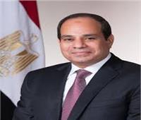 الرئيس السيسي: المحكمة الدستورية حصن لحماية الحقوق والحريات