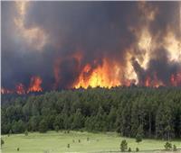 أستاذ في أمراض الصدر يحذر من التعرض لدخان الحرائق