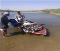 صور| ضبط صيادين باعوا أسماك تعيش على الصرف الصحي في أكتوبر
