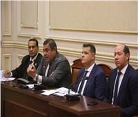 «الشؤون العربية بالنواب» ترفض التدخلات الأجنبية لضرب وحده العراق
