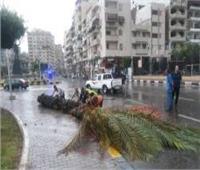 تعطيل الدراسة بسبب الطقس السيئ في بورسعيد
