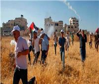 الاحتلال الإسرائيلي يقمع المشاركين في يوم تطوعي لقطف الزيتون جنوب نابلس