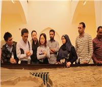 صور  الصينيون العاملون بالعاصمة الإدارية يحتفلون بأسبوع المياه في مصر
