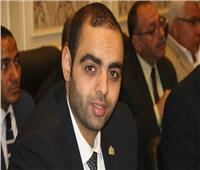 نائب: الرئيس السيسي أكد على ضرورة توعية المواطنين بمخاطر الشائعات