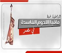 إنفوجراف| الداخلية تواجه مافيا اللحوم الفاسدة في مصر