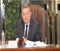 وزير قطاع الأعمال: التجار والشركات الخاصة امتنعوا عن شراء القطن بالوجه القبلي