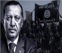 «الدواعش الأوروبيون».. ورقة تهديد جديدة من تركيا إلى أوروبا