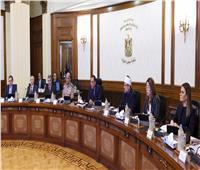نصف دستة قرارات للحكومة.. والاعلان عن افتتاح مشروعات جديدة الأسابيع المقبلة