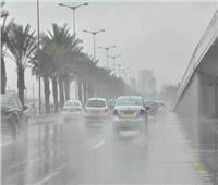 فيديو| الأرصاد تحذر من سقوط الأمطار والشبورة الكثيفة
