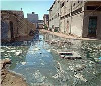 صور| مياه الصرف والقمامة تُعيق وصول الطلبة لمدرسة في الإسكندرية