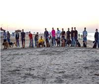 صور| «كلاب دمياط» يحتفلون بالهالوين على البحر