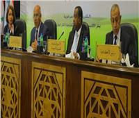 كامل الوزير: «الجسر العربي» الشركة الوحيدة لربطنا بالدول العربية