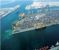 شاهد| فيلم يستعرض معلومات عن المنطقة الاقتصادية لقناة السويس