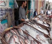 «أسعار الأسماك» في سوق العبور الخميس 14 نوفمبر