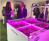 وزير الاتصالات يبحث سبل التعاون بمجال «الذكاء الاصطناعي»