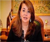 وزيرة التضامن: مصر بها ما يقرب من 60 ألف مؤسسة مجتمع مدني وجمعية أهلية