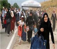 روسيا: عودة 776 لاجئا سوريا إلى بلدهم خلال 24 ساعة