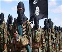 مقتل 5 إرهابيين من تنظيم «داعش» بديالى شرقي العراق