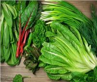«نصائح مجربة».. 3 خطوات لإطالة عمر الخضروات الورقية بالثلاجة