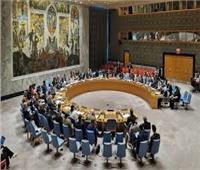 مجلس الأمن القومي النمساوي يبحث مخاطر الجرائم الإلكترونية