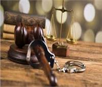 الجنايات تقرر تجديد حبس 4 متهمين في خلية الأمل