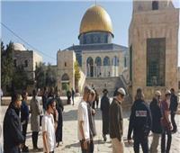 الاحتلال الإسرائيلي ومستوطنون يقتحمون الأقصى ومصلى باب الرحمة