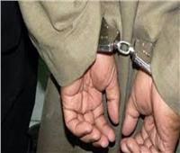 نيابة المنيا: حبس مزارع 4 أيام بتهمة حيازة تماثيل يشتبه في أثريتها