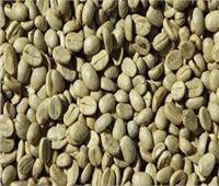 فيديوجراف| تعرف على أضرار القهوة الخضراء