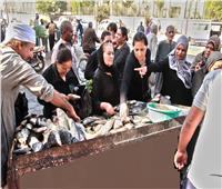 «مستقبل وطن» بالأقصر يقيم منافذ لبيع الأسماك بأسعار مخفضة