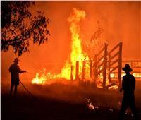 حريق هائل يلتهم مناطق شاسعة شمال سيدني الأسترالية