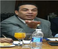 ثروت بخيت: البرلمان المصري أدي دورًا جيدًا في تشريع قانون الاستثمار