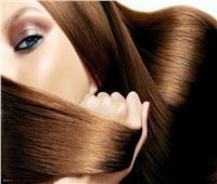 لجمالك.. ماسك «صفار البيض وزيت الزيتون» لتغذية الشعر