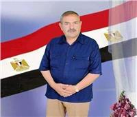 وفاة «شرموخ» عضو مجلس الشعب عن دائرة ملوي