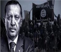 فيديو| باحث في الشأن الليبي: الغضب الأوروبي تجاه تركيا غير كافٍ