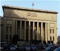 جنايات  القاهرة تستمع لشاهد الري في التعديات على «جزيرة الوراق»