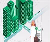 ما الذي يقدمه «التفويض الإلكتروني» الجديد للسعوديين؟