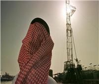 وزير الطاقة السعودي لـ«سبوتنيك»: سنفاجئ العالم