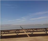 الكهرباء تفتتح أكبر محطة طاقة شمسية بأسوان