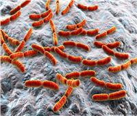 علماء كنديون يطورون سطحا ذاتي التنظيف ضد البكتيريا