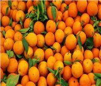 بشرى سارة من «الزراعة» لمصدري البرتقال المصري