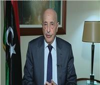 رئيس البرلمان الليبي: إجراء انتخابات بإشراف دولي عقب تطهير طرابلس