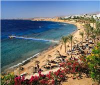 ديلي ميل: «شرم الشيخ» تتلألأ مجدداً في خريطة السياحة العالمية