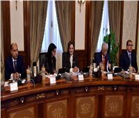 الحكومة توافق على قانون إنشاء الهيئة العامة للسلع التموينية