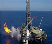 فيديو| «البترول»: نركز حاليًا في البحث عن الزيت الخام بعد تحقيق نتائج جيدة في اكتشافات الغاز