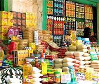الحكومة: جميع المنتجات الغذائية المستوردة سليمة وآمنة تماماً