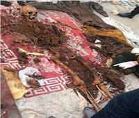 كشف غموض العثور على هيكلين عظميين في الإسكندرية