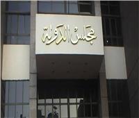 مجلس الدولة يؤيد قرار «الخارجية» بصرف مستحقات أمين شرطة بالدولار وقت الاستحقاق